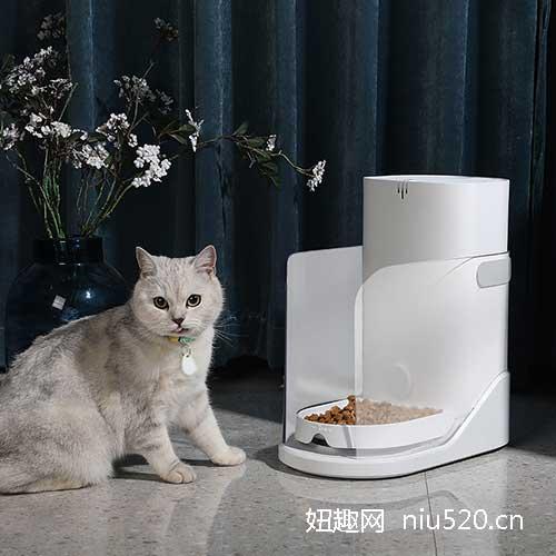 CATLINK智能分食喂食器,再也不用担心猫粮满地都是了!